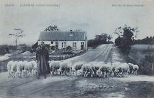BELGIUM - Genck - Campiné Limbougeoise - Genk