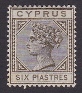 Cyprus. SG 36, 6pi olive-grey. Fine mounted mint.