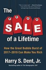 The Sale of a Lifetime: How the Great Bubble Burst of 2017-2019 Can Make You Ric