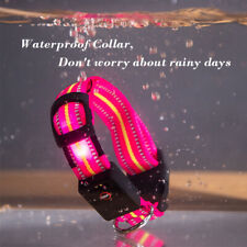Fully waterproof LED Dog Collar Rechargeable UK Seller Fast Free Delivery