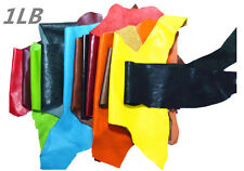 LEMO 2LB variety of colors genuine leather cut pieces scraps Crafts decorations