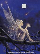 Catch a Falling Star: Fairy by David Delamare (R24)