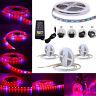 SMD 5050 LED Strip Grow Light Lamp Full Spectrum For Plant Veg / DC / 12V Power