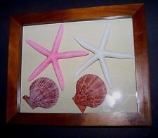 Beautiful Wood Shadow Box Multi-purpose  with lifting glass top  your theme