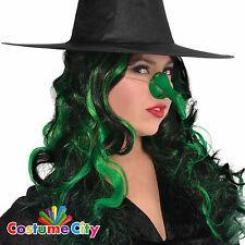 Womens Wicked Witch Green Nose Halloween Horror Fancy Dress Party Accessory