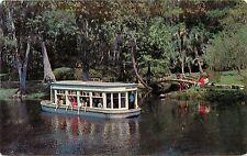 Feeding The Fish Glass Bottom Boats At Florida's Silver Springs Postcard