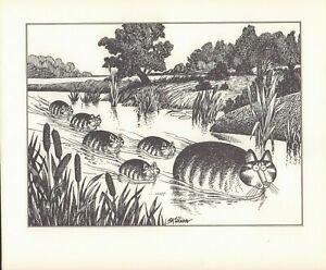 B Kliban Cats CATS UP THE CREEK Vintage ORIGINAL Funny Cat Art Print 1981