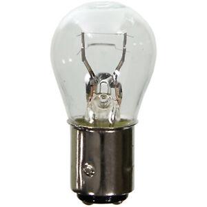 Tail Light Bulb Wagner Lighting BP17881 Pack of 2