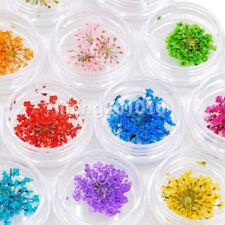 12 colors beauty dried flower for nail art decorations natural nail dry flowers