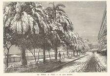 B7203 France - La neige a Nice - Le quai Masséna - Incisione 1888 - Engraving
