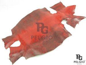 PELGIO Genuine Lizard Belly Skin Leather Soft Hide Pelt Glossy Red