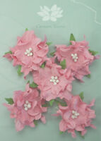 GARDENIA Flowers & Leaves PINK Mulberry Paper 5 Pk 50-55mm across Green Tara A