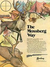 1973 Print Ad of Mossberg Model 800 Varmint Rifle The Mossberg Way
