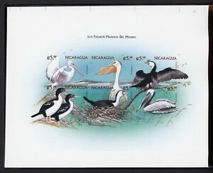 Nicaragua MNH Specialized: 1999 5C Marine Birds IMPERF PROOF S/S Non-Emis $$$
