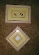 (2) Vtg. Double Framed Wall Pictures W/Real Shells Inside*By Colorfair, Inc.