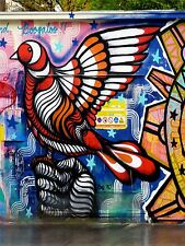 ART PRINT POSTER PHOTO GRAFFITI MURAL STREET PSYCHEDELIC DOVE NOFL0304