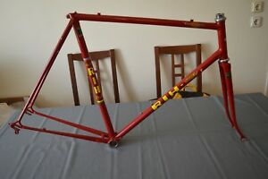 Vintage RIH Super frameset Reynolds 531 with Campagnolo Nuovo Record headset