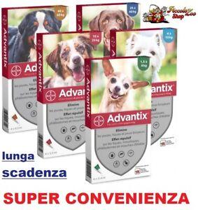 Advantix Bayer 4 pipette antiparassitario cani 0-4/ 4-10/ 10-25/ 25+/ 40-60 kg