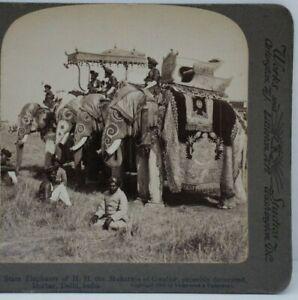 Antique Stereoview, Underwood & Underwood, State Elephants, Maharaja of Gwallor