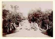 Algérie, Apprêts pour la chasse  Vintage citrate print.  Tirage citrate  8x1