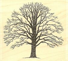 Bare Tree, Wood Mounted Rubber Stamp IMPRESSION OBSESSION - NEW, E1300