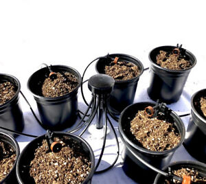 Drip System Irrigation 2X Watering Halo/'s Raised Water Rings 12 Inch