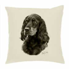 Unbranded Square Decorative Cushions without Personalisation