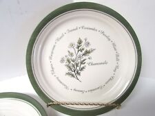 """CORELLE TIMELESS HERBS CHAMOMILE 8 1/2"""" LUNCHEON PLATE  by CORNING WARE"""
