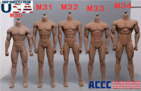 PHICEN TBLeague 1/6 Scale Steel Skeleton Male MUSCULAR SEAMLESS FIGURE Body USA