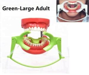 Dental Mouth Opener Nola Dry Field System Cheek Retractor Large Adult Green 1Set
