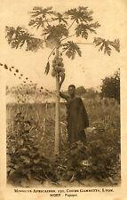 Carte NIGER Papayor Arbres à papayes avec une personne Missions Lyon