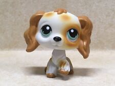 Littlest Pet Shop Lps #344 Cocker Spaniel Dog With Blue Eyes Preowned