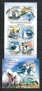 Mozambique 2011 Sc#2358,#2388  Albatrosses  MNH Miniature/Souvenir Sheet Set $30