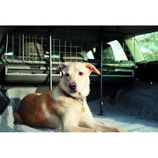 Rete metallica verticale bagagliaio auto barriera per cani adatto per Fiat Croma