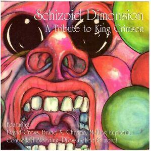 VA Schizoid Dimension: A Tribute to King Crimson DAVID CROSS/Brand X/CHROME etc.
