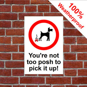 You're not to posh to Pick up your dog poo sign 3505WBK dog fowling