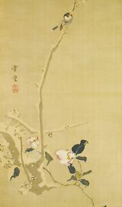 "JAPANESE PAINTING HANGING SCROLL 66.3"" Antique VINTAGE Ink OLD Bird Japan c334"