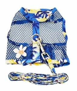 Cool Mesh Dog Harness with Leash - Catching Waves & Matching Leash  XS-L