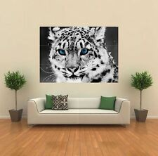 SNOW LEOPARD ANIMAL NEW GIANT POSTER WALL ART PRINT PICTURE G181