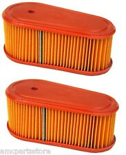 2 Pack, Air Filters Replace Briggs & Stratton 795066