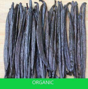 MADAGASCAR Vanilla Beans - Grade B (Perfect for Extract!)