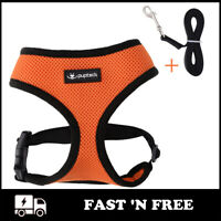 Pet Mesh Harness Vest With Leash Small Dog Walking Safety Adjustable Soft Strap