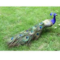 1Pc Artificial Peacock Birds Taxidermy Garden Home Yard Decoration Ornaments