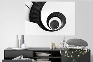 beautiful-nature lovely black & white -high quality Canvas painting  Home decor