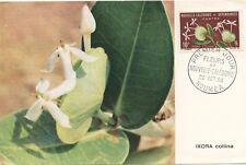 FIRST DAY COVER / 1° JOUR / FLEURS DE NOUVELLE CALEDONIE NOUMEA 1964