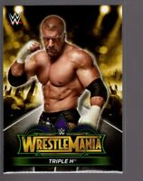 2018 TOPPS WWE Road to Wrestlemania 34 ROSTER #6  TRIPLE H