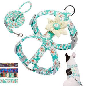Fancy Flower Dog Harness&Lead set Pet Puppy Cat Strap Vest Adjustable Beagle Pug