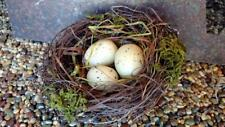 "NWT 5"" Rustic 3 Bird EGG in NEST Twig Straw Moss Decor Ornament Craft"