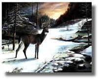 Deer In Wilderness Snowy Woods,Creek  Ruane Manning Wall Art Print Picture