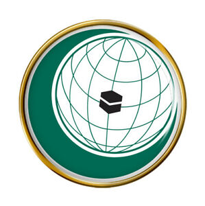 OIC Organisation of Islamic Cooperation Pin Badge